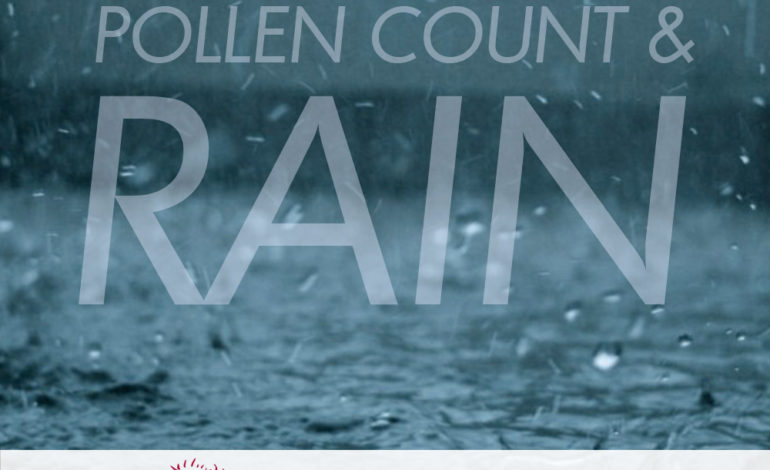 Pollen Count after Rainfall