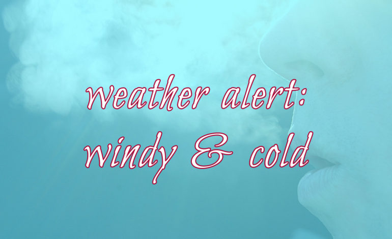North Texas Weather Alert Windy Cold Allergies Asthma Allergy