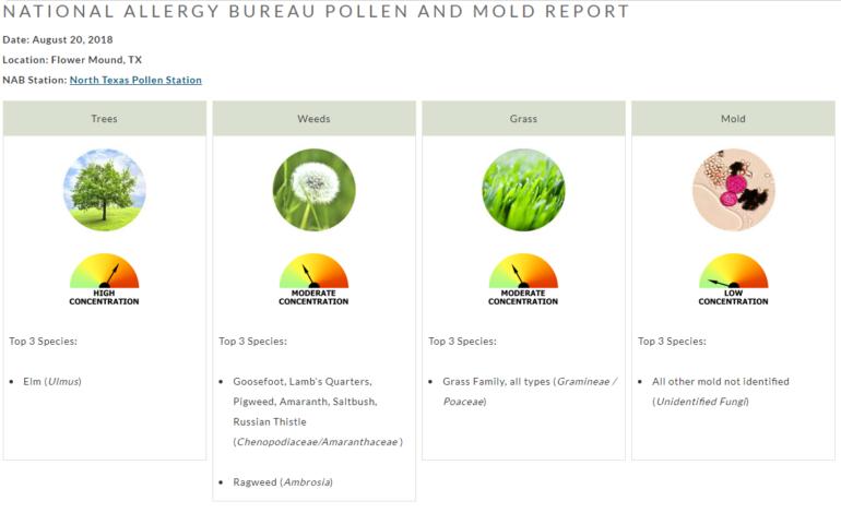 Pollen Count Alert August 20 Flower Mound Denton Allergist Grass Weeds Trees