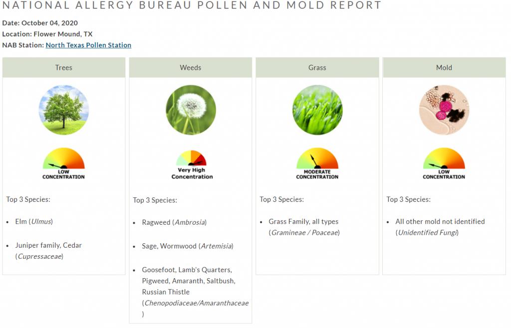pollen count north texas october 4 ragweed weeds