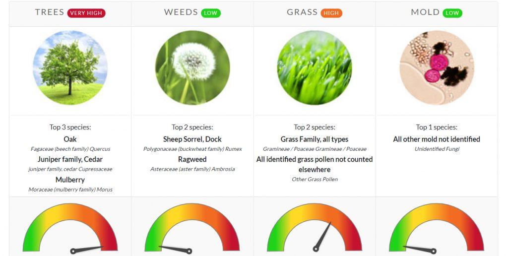 pollen count north texas allergies asthma allergist