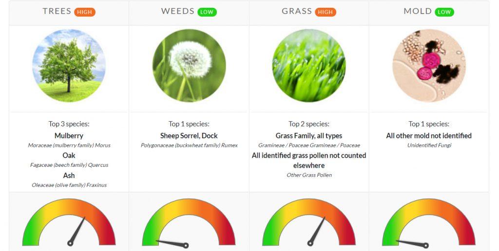 pollen count update north texas trees grass weeds mold allergies asthma allergy allergist